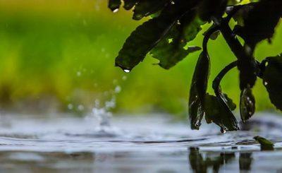Inicio de semana laboral fresco con precipitaciones dispersas