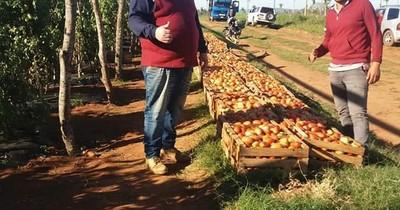 Pequeños productores  venden tomate en el Abasto