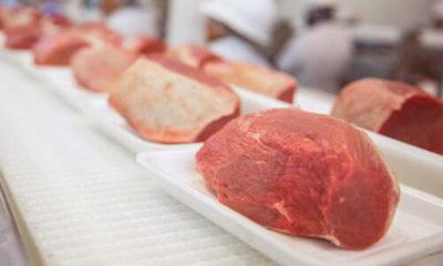 » Cayó la producción de carne en Estados Unidos durante el mes de mayo; hubo menos sacrificio bovino, porcino y avícola