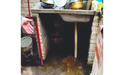 Abuela metió en jaula de conojos a su nieta – Prensa 5