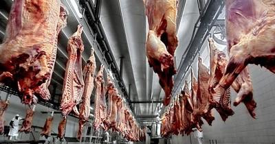 La exportación de carne se incrementó casi el 10%