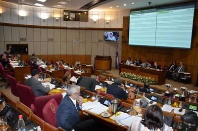 Senado rechaza nuevo endeudamiento para destinar recursos a Fogapy