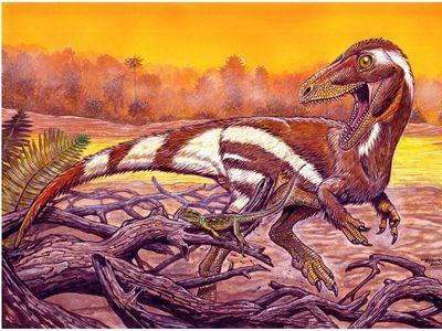 Hallan fósil de una especie de dinosaurio desconocida en Brasil