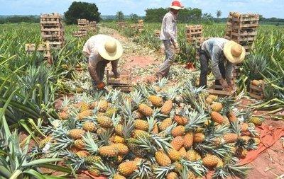 Productores de Guajayvi fueron beneficiados con insumos agrícolas