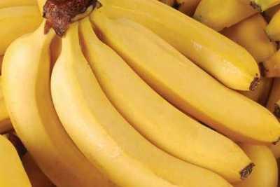 MAG busca comercios para vender producción de banana