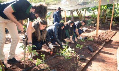 Vivero municipal se reactiva – Diario TNPRESS
