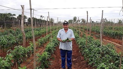 Gobierno presta dinero a pequeños productores con bolsillos golpeados por la pandemia