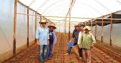 IFC apoya al sector agrícola de Paraguay durante la pandemia