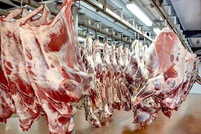Paraguay vuelve a exportar carne a Arabia Saudita – Diario TNPRESS