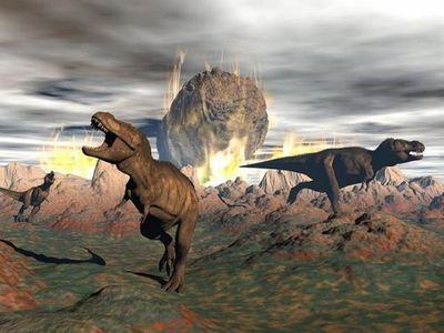 La vida se recuperó 700.000 años después del fin de los dinosaurios