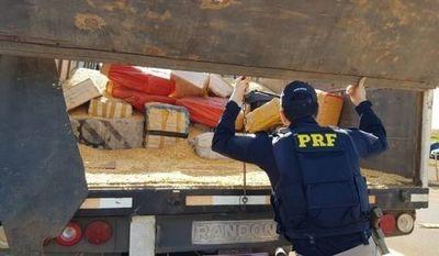 Incautan 9 toneladas de marihuana en medio de una carga de maíz en Ponta Porã