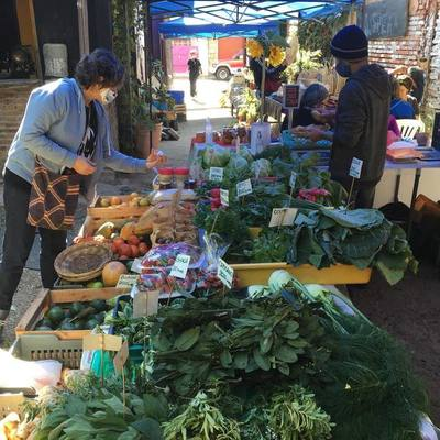 Propuesta fresca: Sigue la Feria Agroecológica en la Plaza Italia todos los sábados