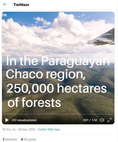 Critican tuit de Banco Holandés sobre deforestación en el Chaco
